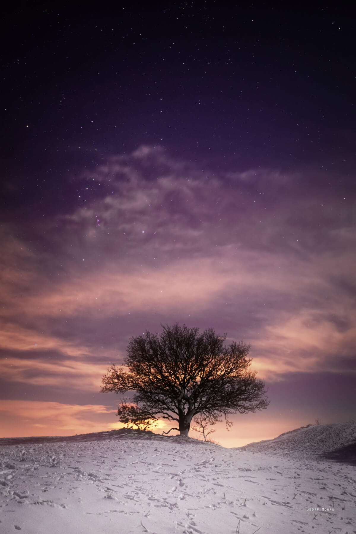 On a cold winters night on top of the Malvern Hills a lone tree looks out to the constellation of Orion; as the moonlight of a quarter moon illuminates the snowy landscape below.